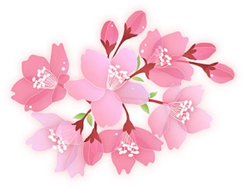 Sakura10_bpng1_2